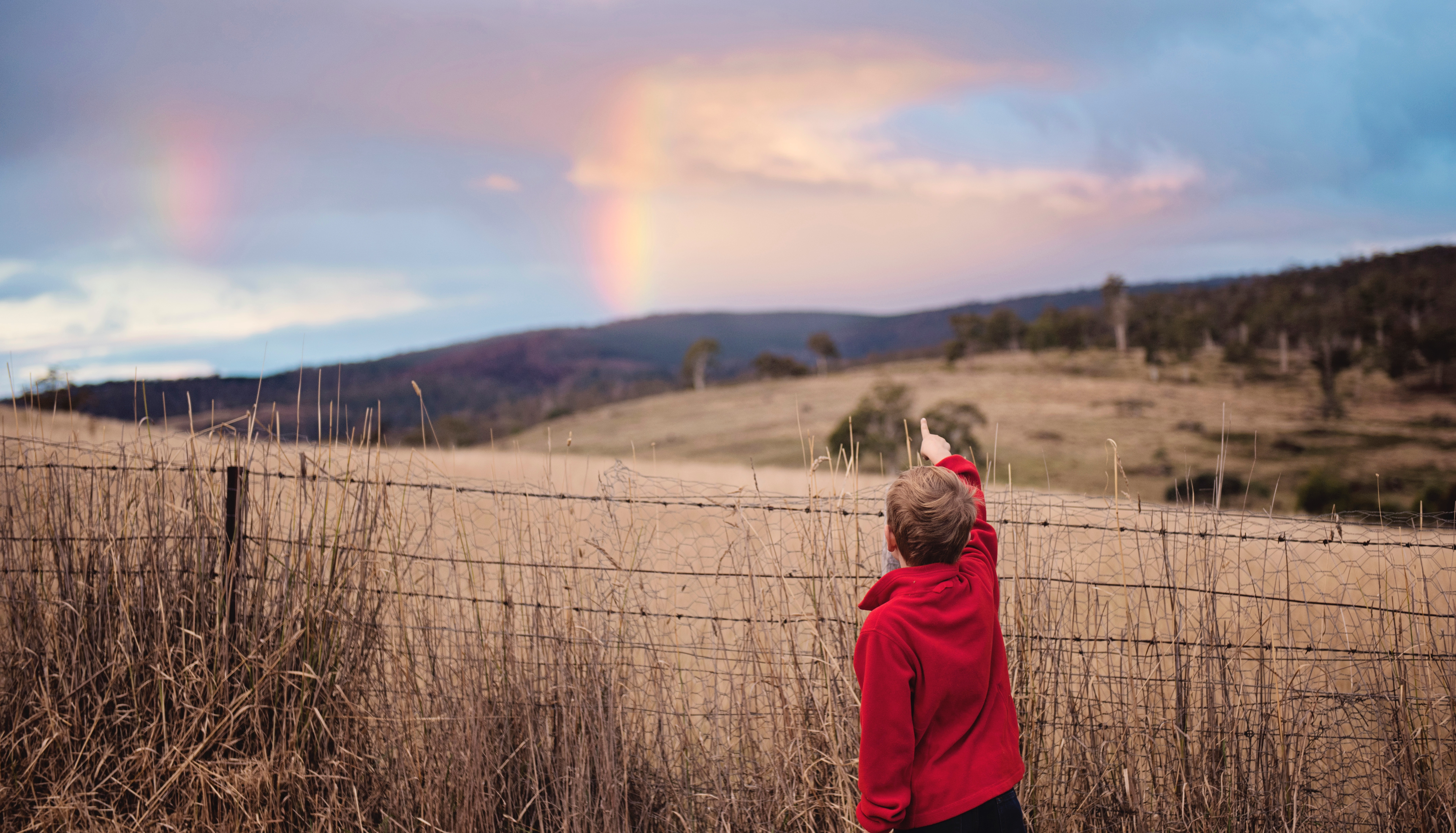 空を指さす少年の写真